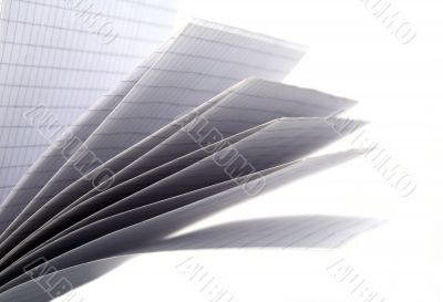 Sheets of a writing-book