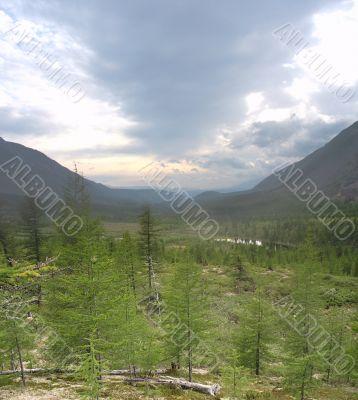 Taiga landscape 02