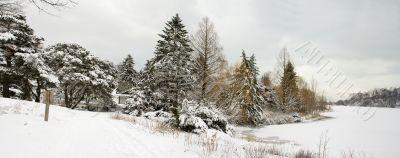 Winter lake shore view