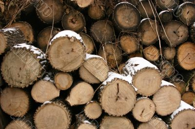 Firewood Chop firewood Stove Chop firewood Woods