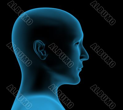 Transparent head of the person - x-ray