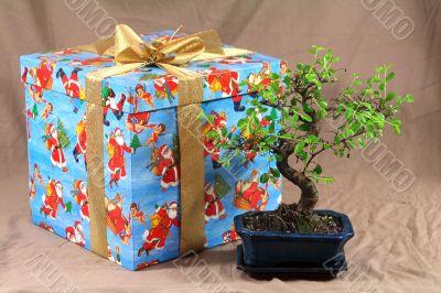 japanese present