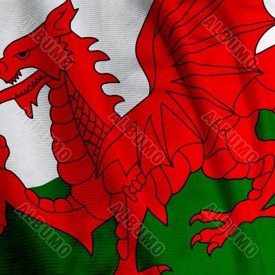 Welsh Flag Closeup