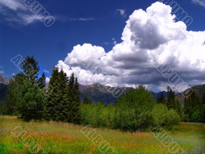 High Mountain Flat 3