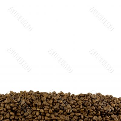 Template with coffee beans footer