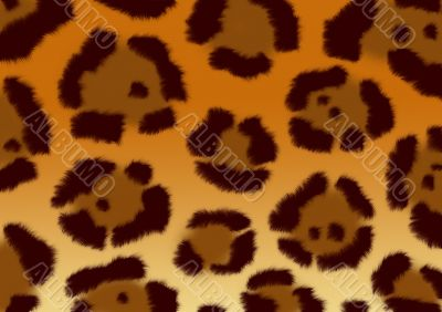 Background - a fluffy skin of a jaguar