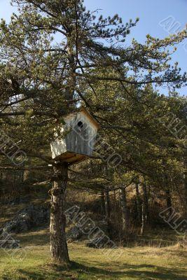 huge wooden nestling box
