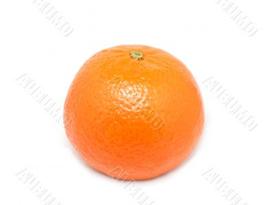Tangerine from Morocco