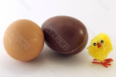 Chick, egg and chocolate