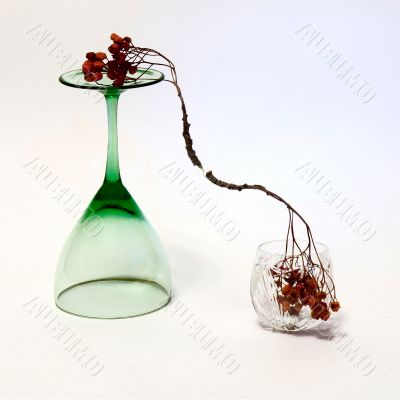 wineglass and the ashberry twig