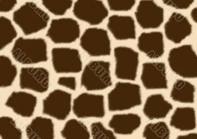 Texture - a fluffy skin of a giraffe