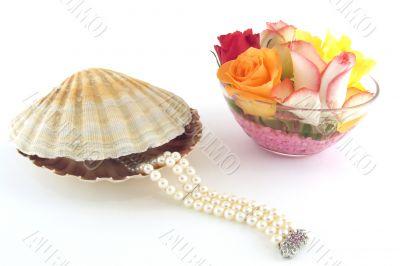 Bracelet from a shell