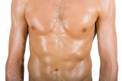 Young man torso