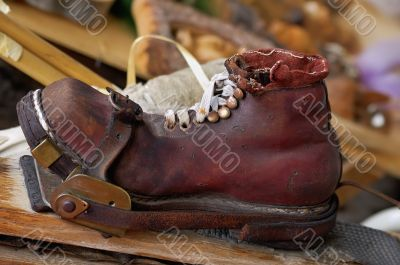 Old Skishoe