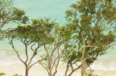 Aurora Beach