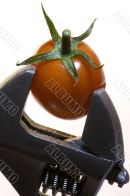 Tomato with goods Isolated