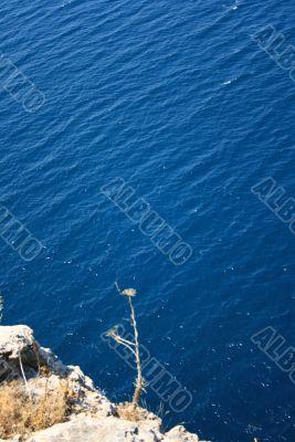 dizzy altitude over the sea