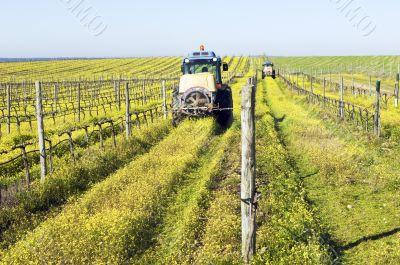 Tractors spraying the vineyard