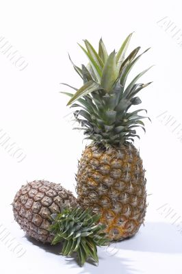 Freshness pineapple
