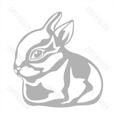 ornate rabbit