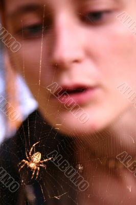 Girl looking at spider web
