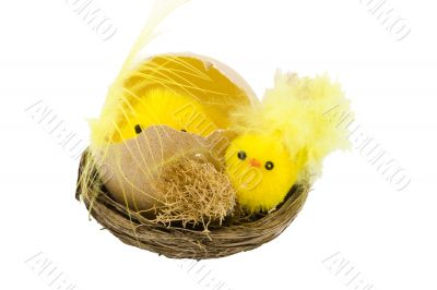 Easter Chickens