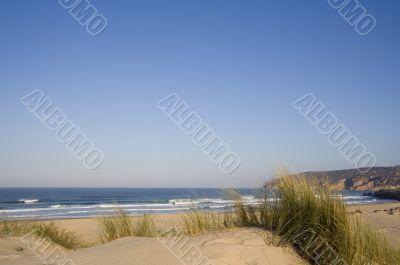 Dune at the beach