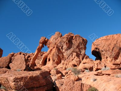 Elephant Rock in Valley of Fire, Nevada