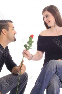 you are as beautiful as this rose