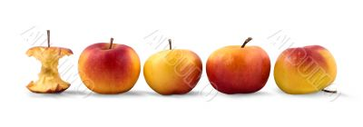 Four red apples and bit