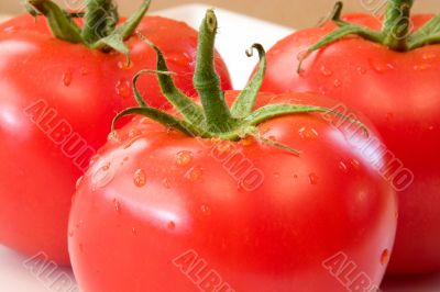 Delicious Tomatoes.
