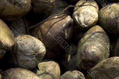Several huge nuts