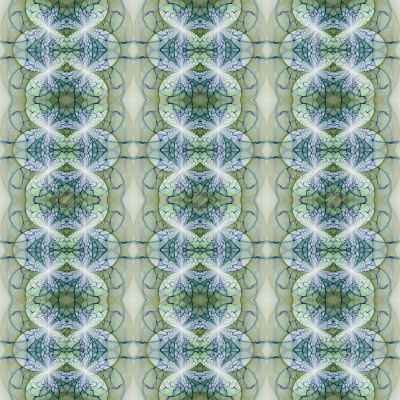 Ornate Pattern Abstract