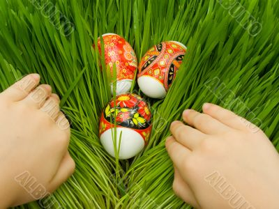 Easter eggs in the grass and hands