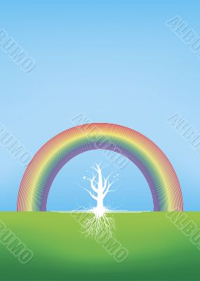 Beautiful tree with roots with a rainbow