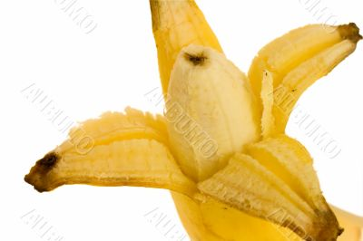 opened banana