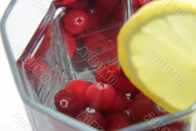 Red cranberry in glass