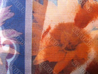 texture is fabric 01
