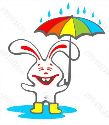 happy rabbit with umbrella
