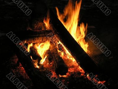 fire in a night wood