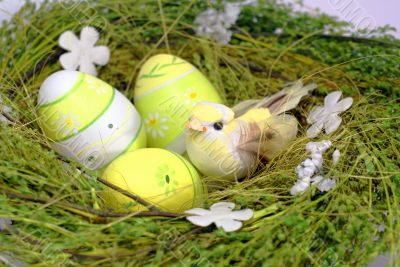 green nest with eastereggs and colred small bird