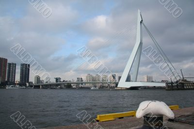 Erasmusbridge Rotterdam
