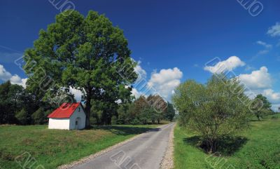 Nice landscape green blue sky and empty way