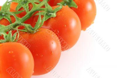 close up of fresh juicy tomatos bunch