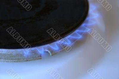 Gas Stove Flame