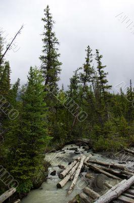 timber river