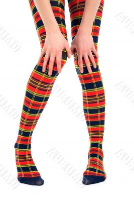 Funny legs in multicolored tights