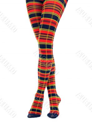 Legs in multicolored fancy tights