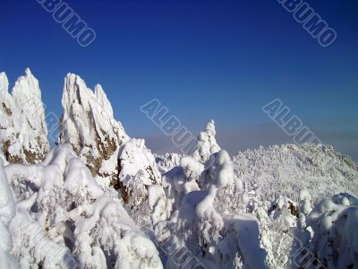 winter in mountains, forest, rocks