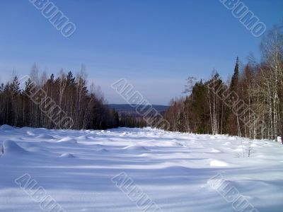 winter in mountains, forest